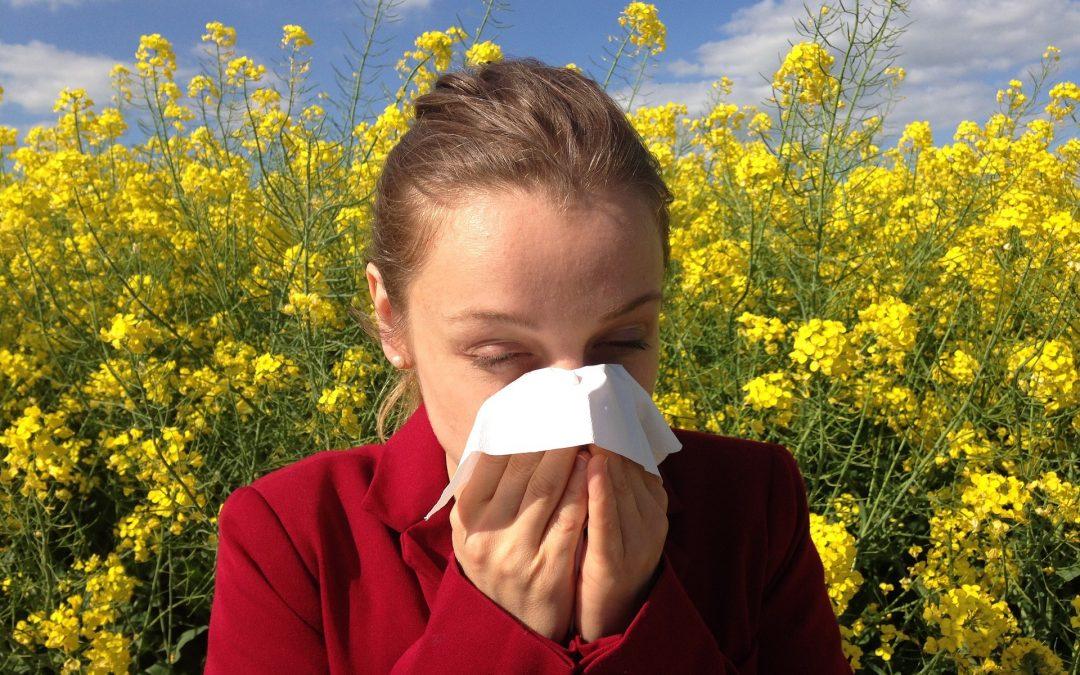 Jesteś alergikiem? Sprawdź kalendarz pylenia roślin