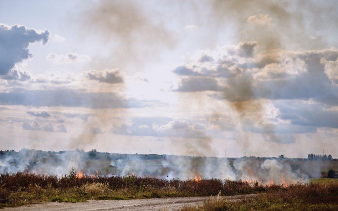 """Kampania społeczna """"Stop pożarom traw"""""""