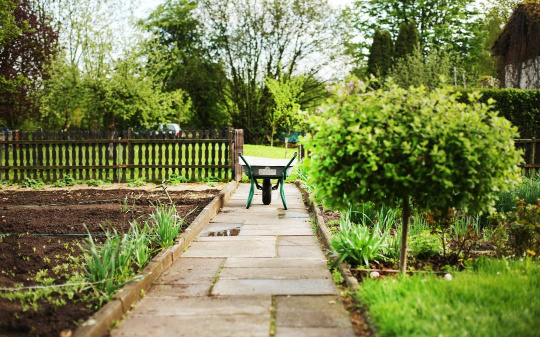 Policja: Uwaga na złodziei okradających ogródki działkowe