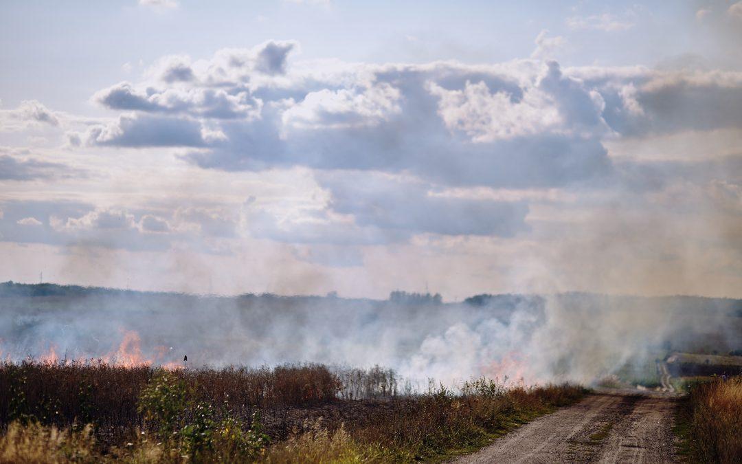 Strażacy apelują: Wypalanie traw jest niebezpieczne oraz niedozwolone